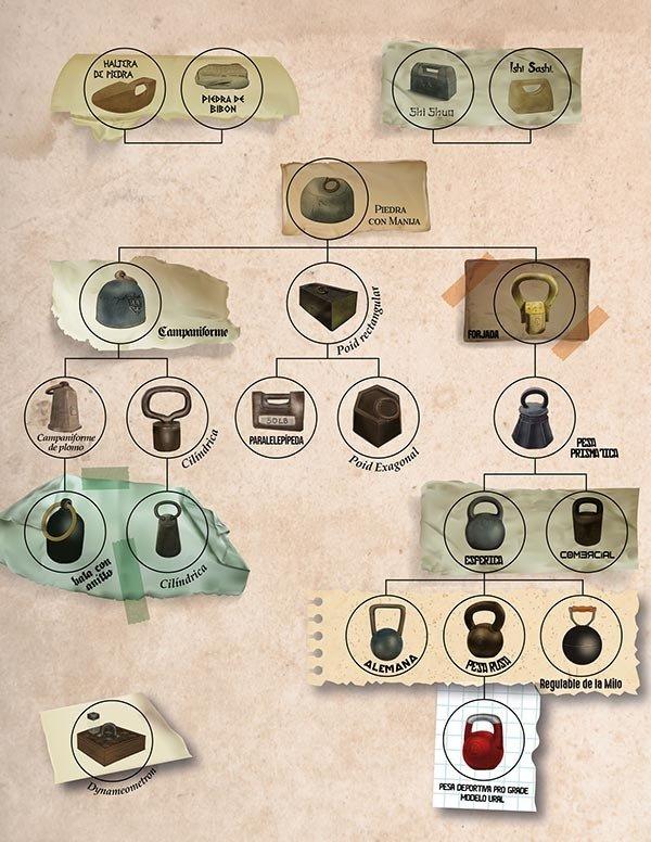 ≫ Mejores kettlebells: la GUÍA de compra definitiva
